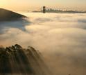 San Francisco's Golden Gate Bridge and Bay Bridge loom above a blanket of fog.