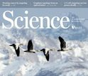 cover of journal Science jan 16 2015