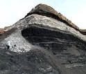 Open pit mine in Tevshiin Govi in central Mongolia where the mummified fossil plants were found.