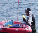 Researchers measure nitrogen in seagrass meadows at the NSF Virginia Coast Reserve LTER site.