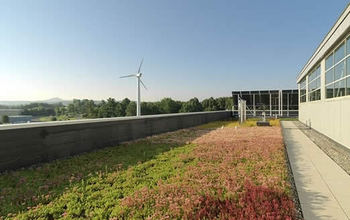 Photo of a roof with plants growing and a wind turbine in the background