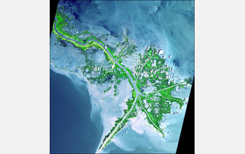 Satellite image of a delta.