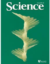 Cover of the June 12, 2009 edition of the journal Science.