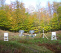 Photo showing equipment at NSF's Hubbard Brook LTER Site that monitor rainwater chemistry.