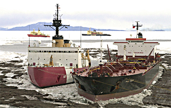 Ships at McMurdo Station in January 2005