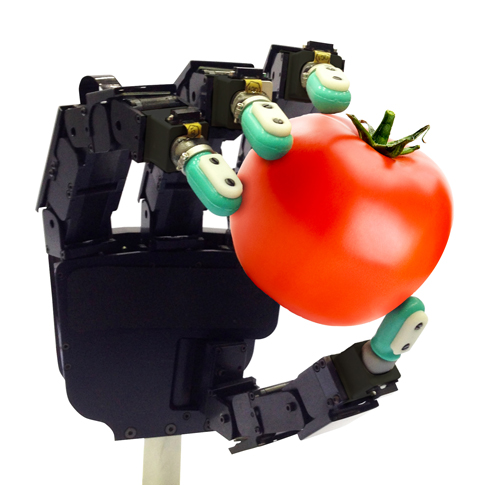 Robotic hand holds a tomato