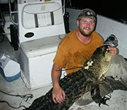 Man holding female alligator recaptured