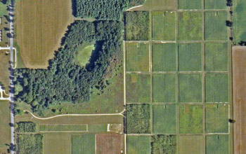 Satellite view of the cropping systems experiment.
