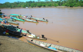 Photo of long boats anchored along the shoreline of a river in the Peruvian Amazon.