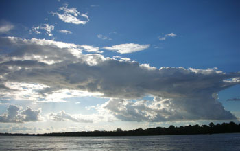 Photo of the Amazon River with rain forest on the far bank and clouds in the sky.