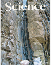 Cover of October 3, 2008, issue of Science magazine.