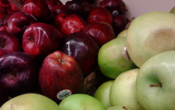 variety of apples