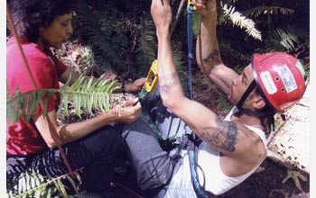 Photo of Nalini Nadkarni helping rapper C.A.U.T.I.O.N. prepare to climb into the forest canopy.