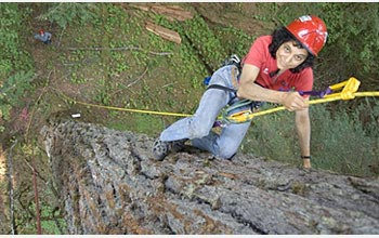 Photo of Nalini Nadkarni hanging from her canopy access gear.