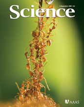 Cover of September 4 Science magazine.