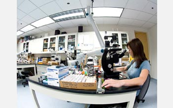 Photo of the zooplankton laboratory at SFSU's Romberg Tiburon Center.