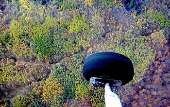 Aerial photo showing color differentiation of genetically distinct aspen clones in Wisconsin.