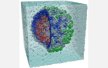 Researchers completed the first all-atom simulation of satellite tobacco mosaic virus.