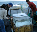 Photo showing setup of incubation experiments to study phytoplankton response to acidification.