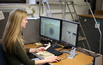 Photo of a researcher entering fossil locality data into a computer.