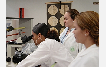 Student looks into microscope as other students in lab look on.