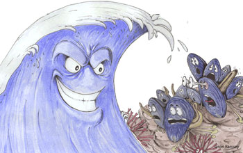 Cartoon showing a threatening wave scaring blue mussels