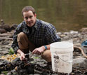 Biologist Michael O'Donnell collects blue mussels on rocky shores at San Juan Island, Wash.
