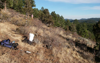 Research area in Gordon Gulch, Colo., part of NSF's Boulder Creek Critical Zone Observatory.