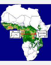 Green zone in Africa map has tsetse flies in that infect cattle with fatal trypanosomes.