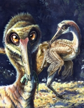Buitreraptor, along with its primitive reptile prey, is reconstructed in this illustration.