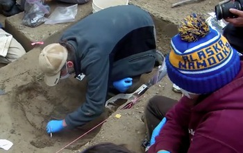scientists working on a burial site