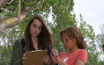 Photo showing two students taking notes on seasonal changes in plants for Project Budburst.