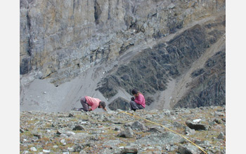 Photo of Bill Morris and Alex Rose measuring plants in an alpine cirque.
