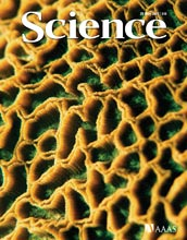 Cover of May 29, 2009, Science magazine.