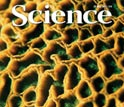 Capa da revista <em>Science</em>.