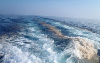 Photo of  oil bubbles in the wake of an oceanographic research vessel.