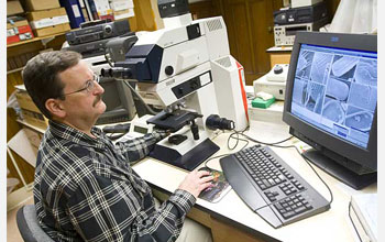 Photo of Peter Siver using a light microscope and a computer to study diatoms
