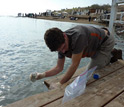 Photo of a scientist sampling Dead Sea water, which is some 12 times more saline than most seawater.