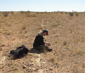 Photo of scientist Tim Lyons looking at a sample from the Georgina Basin in Queensland, Australia.