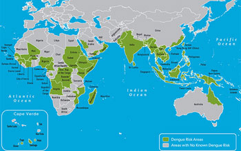 Map showing where dengue has occurred in the Eastern Hemisphere.