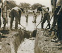 Worker men in the southern U.S. in the 1920s dig a drainage ditch to control mosquitoes.