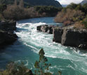 Photo of unpolluted river in Chilean Patagonia that has been invaded by Didymo.