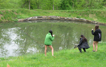 Photo of students exploring a pond ecosystem with mobile phones.