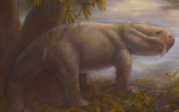 Graphic illustration showing an artist depiction of Dicynodon