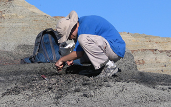Geologist with a sample, on a mountain