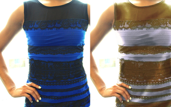 Was the dress gold and white or blue and black?  NSF - National ...