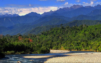 photo of forest and mountains in the Andes region