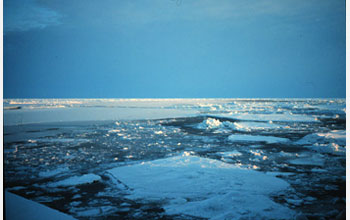 Photo of melting ice sheets in the Arctic.