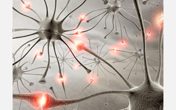 Illustration showing signals among neurons that precede an epileptic seizure.