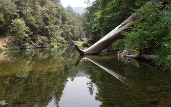 Researchers study Northern California's Eel River watershed at one of NSF's nine CZO sites.